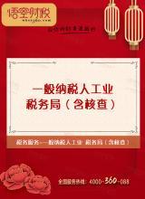 一般纳税人工业-税务局(含核查)